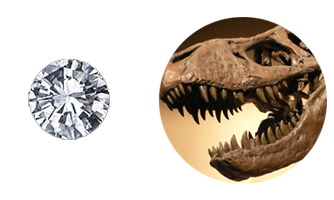 Diamonds are as old as some dinosaurs!